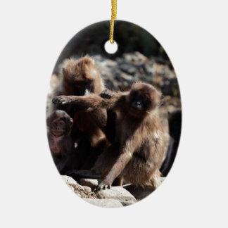 Ornamento De Cerâmica Grupo de babuínos do gelada (gelada de