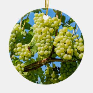 Ornamento De Cerâmica Grupo verde crescente delicioso das uvas & céu