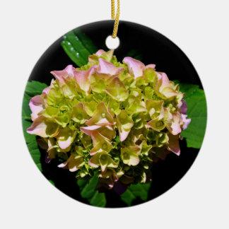 Ornamento De Cerâmica Hydrangea verde e cor-de-rosa