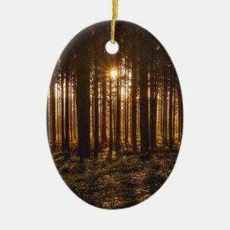 Ornamento De Cerâmica Ideia de árvores pretas e de Sun