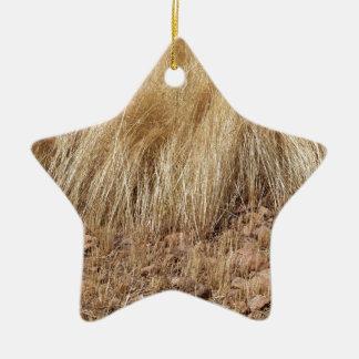 Ornamento De Cerâmica iDetail de um campo do teff durante a colheita