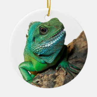 Ornamento De Cerâmica Iguana verde
