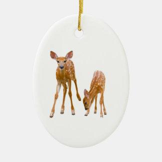 Ornamento De Cerâmica Imagem da jovem corça para o Oval-Ornamento