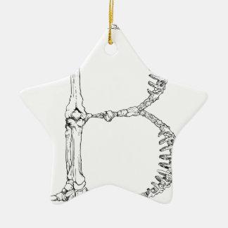 Ornamento De Cerâmica Inicial do osso da letra B