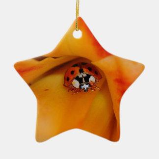 Ornamento De Cerâmica Joaninha