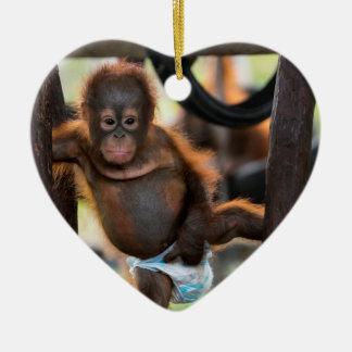 Ornamento De Cerâmica Júnior de Jeffrey do órfão do orangotango do bebê