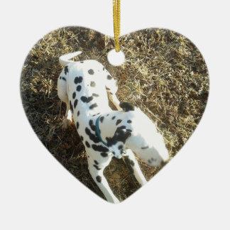 Ornamento De Cerâmica Kevin o Dalmatian