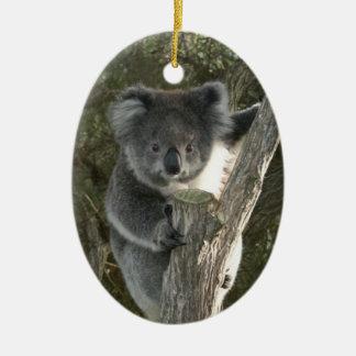 Ornamento De Cerâmica Koala bonito que escala uma árvore