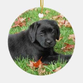 Ornamento De Cerâmica Labrador preto - alegria do outono