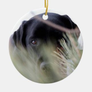 Ornamento De Cerâmica Labrador preto - através das árvores