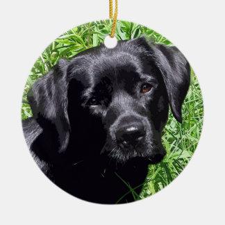 Ornamento De Cerâmica Labrador preto - dia de primavera