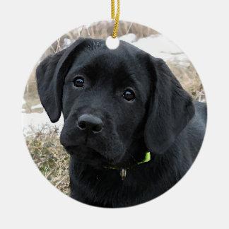 Ornamento De Cerâmica Labrador preto - esperando o primavera