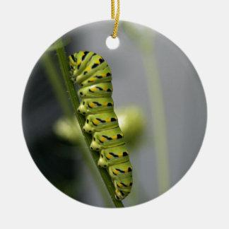 Ornamento De Cerâmica Lagarta preta do swallowtail (parsleyworm) em Dil