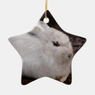 Ornamento De Cerâmica Lebre animal da pele do mundo animal do jardim