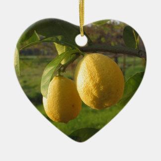 Ornamento De Cerâmica Limões amarelos que crescem na árvore no por do