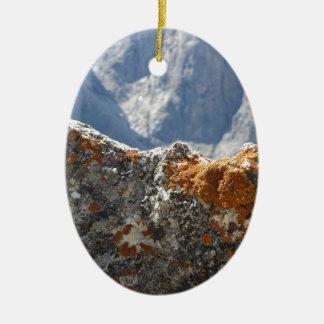Ornamento De Cerâmica Líquenes alaranjados que crescem na cara da rocha