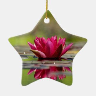 Ornamento De Cerâmica Lírios de água