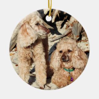 Ornamento De Cerâmica Lixívia - caniches - Romeo Remy