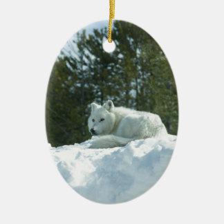 Ornamento De Cerâmica Lobo do fantasma