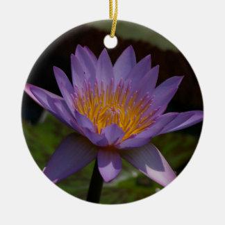 Ornamento De Cerâmica Lotus roxo Waterlily