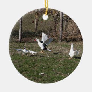 Ornamento De Cerâmica Luta dos gansos