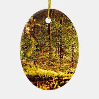 Ornamento De Cerâmica Luz na floresta
