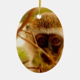 Ornamento De Cerâmica Macaco insolente