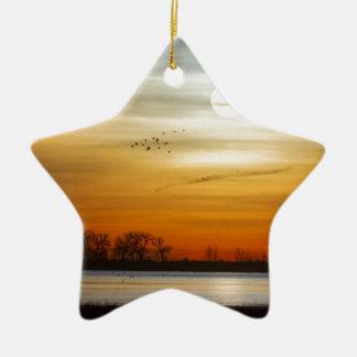 Ornamento De Cerâmica Manhã bonita do lago
