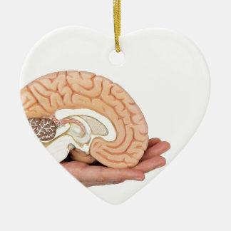 Ornamento De Cerâmica Mão que guardara o hemisfério do cérebro no fundo