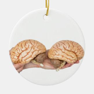 Ornamento De Cerâmica Mãos que guardaram o cérebro humano modelo no