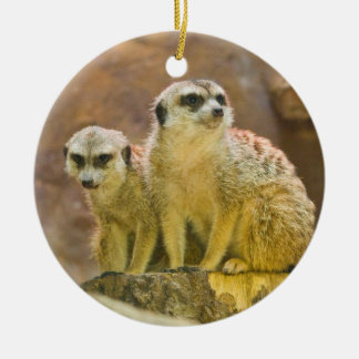 Ornamento De Cerâmica meerkat