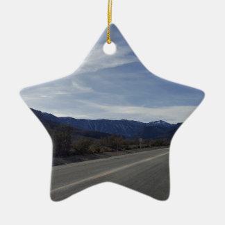 Ornamento De Cerâmica na estrada a mt Charleston nanovolt