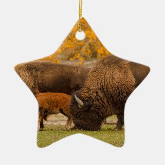 Ornamento De Cerâmica Nação da família do bisonte