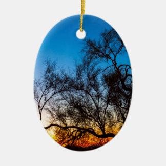 Ornamento De Cerâmica Nascer do sol da silhueta da árvore de Palo Verde