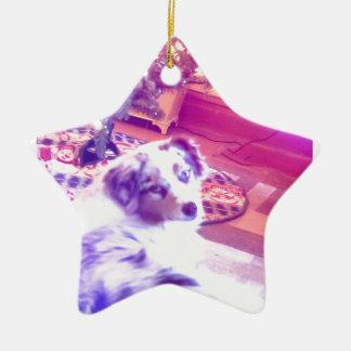 Ornamento De Cerâmica Natal australiano do pastor