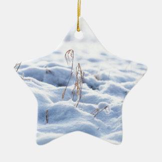 Ornamento De Cerâmica Neve em um prado no macro do inverno