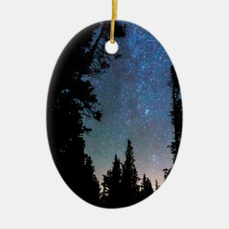 Ornamento De Cerâmica Noite da floresta da montanha rochosa
