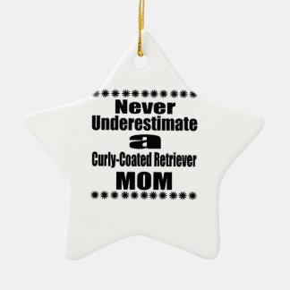 Ornamento De Cerâmica Nunca subestime mamã Encaracolado-Revestida do