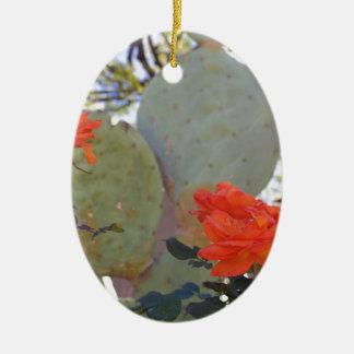 Ornamento De Cerâmica O cacto aumentou