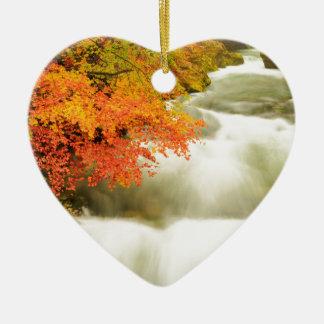 Ornamento De Cerâmica O desfiladeiro de Soteska Vintgar no outono