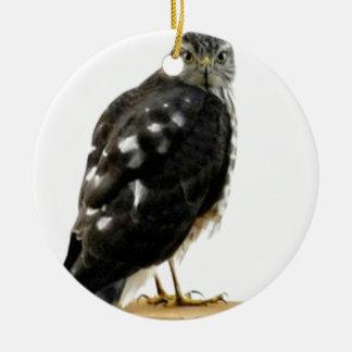 Ornamento De Cerâmica O falcão