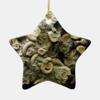 Ornamento De Cerâmica o fóssil descasca a arte