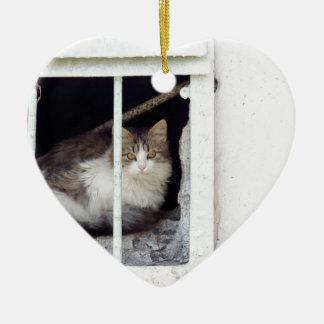 Ornamento De Cerâmica O gato desabrigado observa a rua