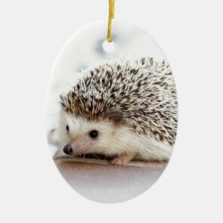 Ornamento De Cerâmica O ouriço bonito do bebê