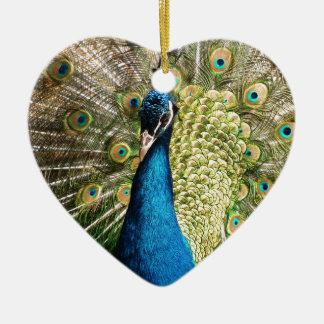 Ornamento De Cerâmica O pavão bonito