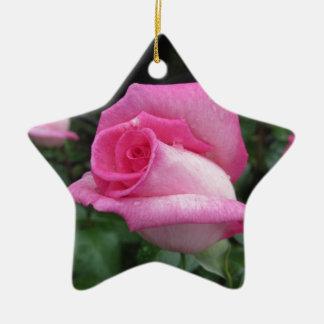 Ornamento De Cerâmica O rosa do rosa floresce com gotas de água no
