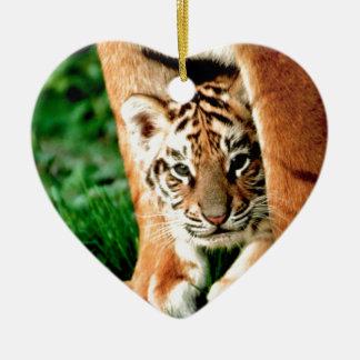 Ornamento De Cerâmica O tigre Cub de Bengal espreita para fora