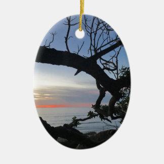 Ornamento De Cerâmica Oceano & árvores