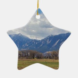 Ornamento De Cerâmica Opinião de cão de pradaria de Boulder Colorado