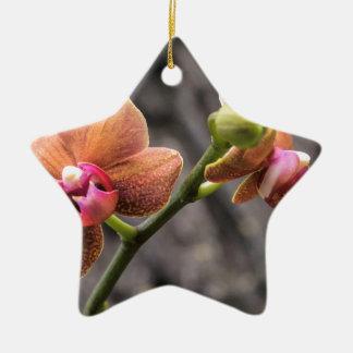 Ornamento De Cerâmica Orquídea alaranjada